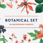 水彩の草花の風合いが美しいイラストセット「Botanical Garden Watercolor Set」