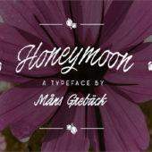 繊細なイメージ表現に活躍する 細身なフリーフォントまとめ「20 Free Thin Fonts for Elegant Designs」