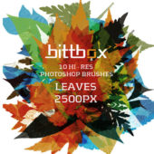 高解像度の葉っぱのPhotoshopブラシセット「Free High-Res Photoshop Brushes – Leaves」
