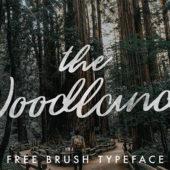 デザイン性の高いフリースクリプトフォント30選「30 Free Script Fonts You Can Use for Your Designs」