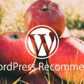 プラグインを使わずにWordPressで関連記事を出す方法