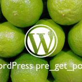 WordPress:pre_get_postsを用いてカテゴリページや検索結果の表示を調整する