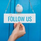 ブログ初心者向けTwitter分析ツールの使い方と活用方法