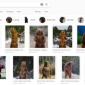 Google画像検索のSEO対策とは?ファイル名やファイルサイズまで検索されやすい画像を考える