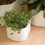 おしゃれなデザインのプランター・植木鉢10選。かわいい北欧デザインの鉢カバーもおすすめ