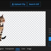 オンラインで手軽に画像や動画の背景を切り抜こう!remove.bgとUnscreen