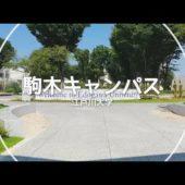 プログラミングが学べる「江戸川大学」について