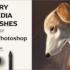 今週末まで無料!イラストに美しい光と影の質感を描けるPhotoshopの高品質なブラシ素材 -Dry Media Brushes