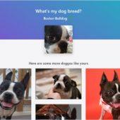 TensorFlow.jsで犬の写真から犬種を判別するオープンソースのWebアプリ・「DogFinder」